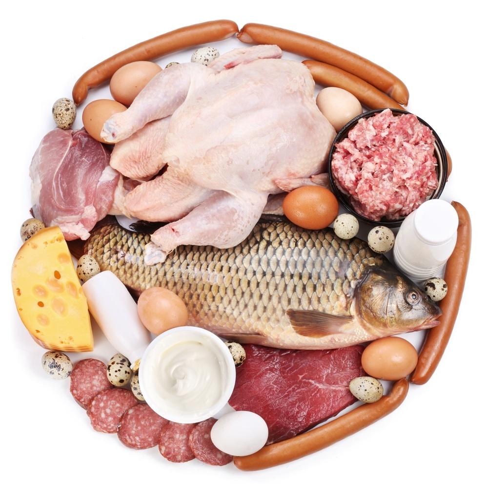 thực phẩm giàu protein giúp tăng cơ bắp