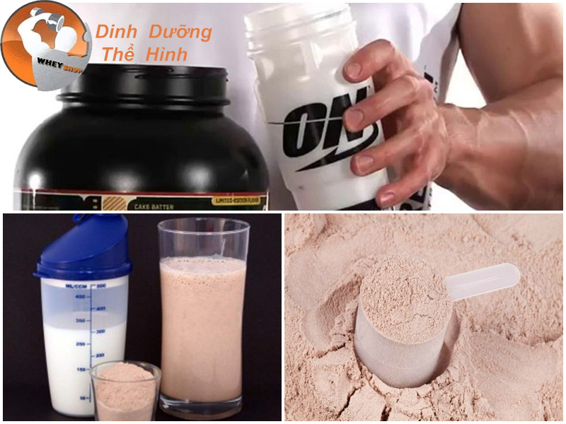 cách pha chết whey protein