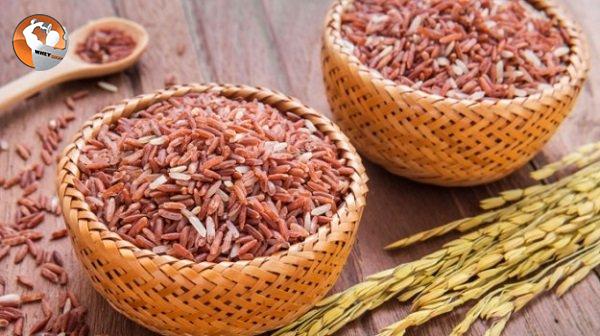 Cách làm bột đậu dinh dưỡng cho người tập thể hình