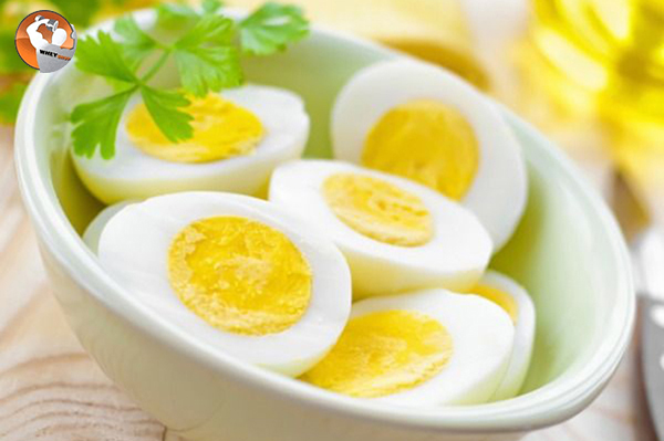 Ngày nào chúng ta cũng đều ăn nhiều trứng có tốt không?