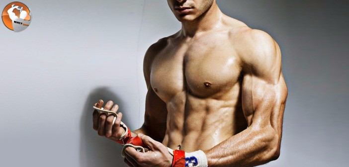 Sản phẩm nào có thể thay thế thuốc tăng cơ