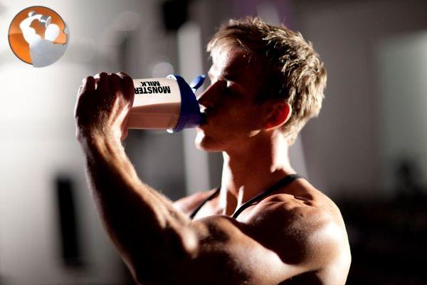 whey protein impact