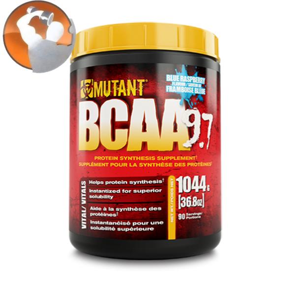 Bạn đã biết BCAA loại nào tốt nhất chưa?