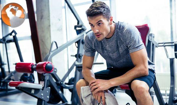 sữa tăng cân cho người tập gym