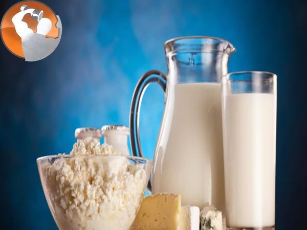 Sữa thể hình là nguồn cung cấp dinh dưỡng đắt giá