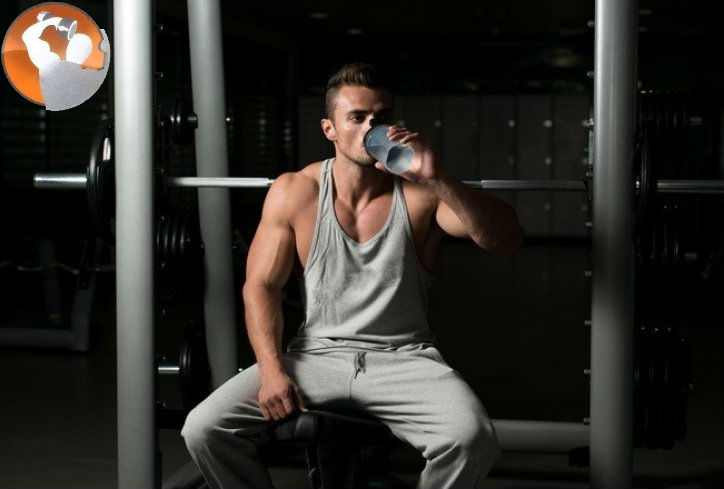 whey protein isolate 100