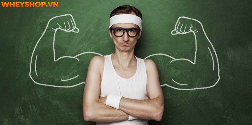 Chế độ ăn cho người tập gym là yếu tố quan trọng hàng đầu để tăng cân tăng cơ hoặc giảm mỡ. Xây dựng chế độ ăn cho người tập gym với hướng dẫn cơ bản sau...