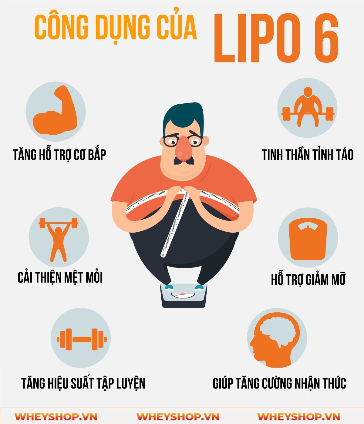 Lipo 6 tăng cường khả năng trao đổi chất cơ thể, giảm mỡ và giảm cân nhanh hơn, tăng sự tỉnh táo tập trung và giảm khả năng thèm ăn