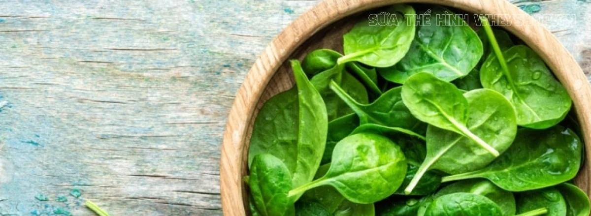 Ăn gì để tăng cơ bắp là điều mà phần lớn người tập gym thể hình quan tâm tới. Tổng hợp ngay 50 thực phẩm tăng cơ bắp nhanh nhất dành cho người tập gym...