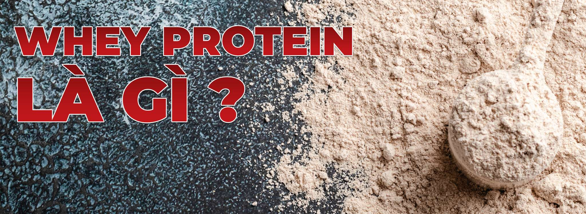 whey protein la gi whey protein co tot khong