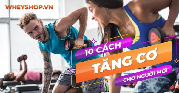 Tăng cơ luôn là mục tiêu hàng đầu của người tập gym, thể hình. Cùng WheyShop điểm qua 10 cách tăng cơ hiệu quả nhất dành cho người mới tập gym nhé...