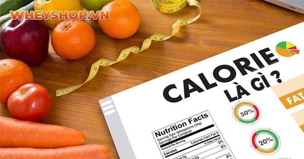 Tìm hiểu chi tiết về calo là gì, những lưu ý về cách giảm cân và hạn chế calo cũng như tham khảo bảng tính calo mới nhất dành cho người giảm cân qua bài viết...
