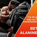 Beta Alanine là gì? Tìm hiểu về 5 lý do quan trọng là gymer cần biết trước khi sử dụng Beta-Alanine trong việc hỗ trợ tập luyện...