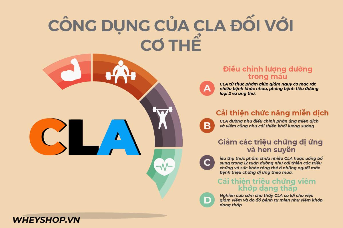 CLA là gì? Axit linoleic liên hợp gọi tắt là CLA, có tác dụng đối với việc giảm béocủa những người đang thực hiện chế độ giảm cân, ăn kiêng hay không?