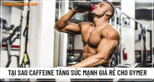tang suc manh caffeine 8