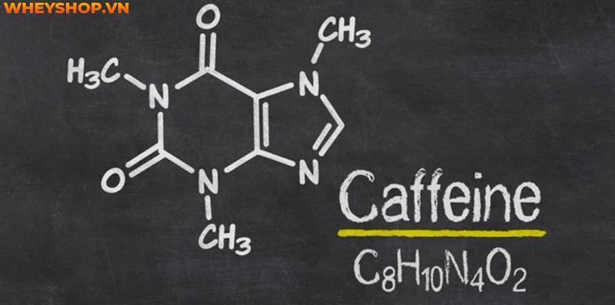 Caffeine là một thành phần tăng sức mạnh hiệu quả khi tập luyện - Bài viết này tìm hiểu về Caffeine và những lợi ích của Caffeine đối với gymer nhé...