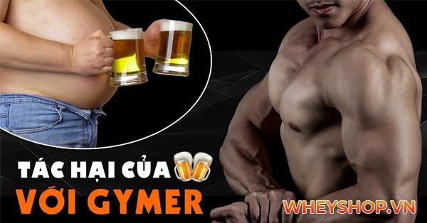 tap gym co uong duoc ruou bia 10 tac hai cua ruou bia voi suc khoe 600x314 1
