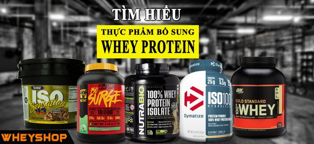 Whey Protein là gì? Whey Protein nào tốt nhất? Có nên sử dụng Whey Protein ? 1