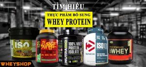 Whey Protein là gì? Whey Protein nào tốt nhất? Có nên sử dụng Whey Protein ? 4