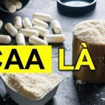 Tìm hiểu BCAA là gì ? Axit amin BCAA có công dụng Tăng Cơ Giảm Mỡ đối với người tập Gym, tập thể hình. BCAA chống dị hóa cơ bắp, giảm mệt mỏi trong tập hiệu quả