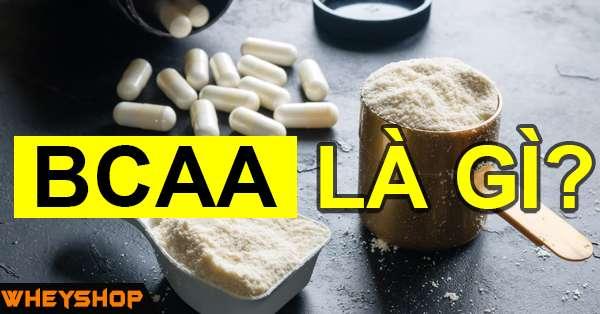 BCAA là gì? BCAA có tác dụng gì ?