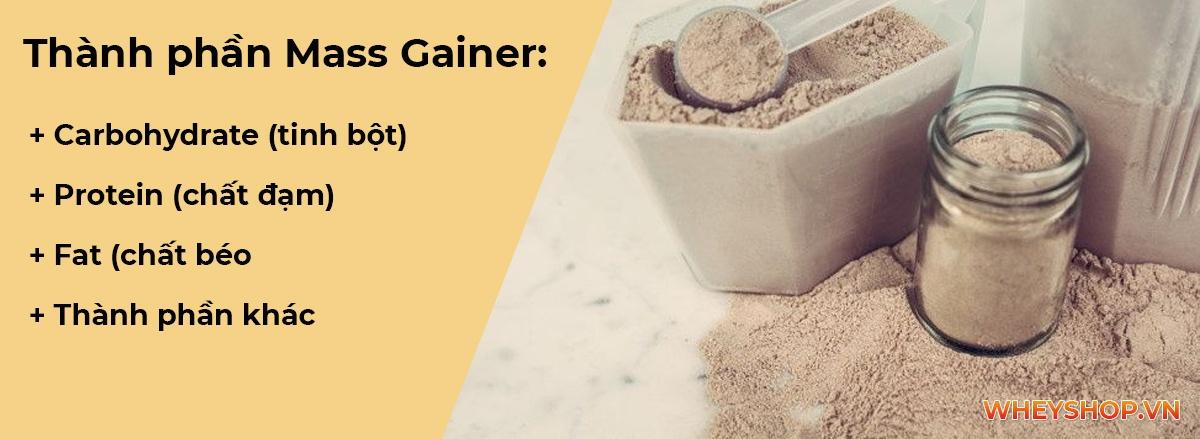 Mass gainer là gì ? Cùng WheyShop tìm hiểu về Sữa tăng cân Mass Gainer và cách pha Mass Gainer tăng cân nhanh hiệu quả nhất dành cho người mới sử dụng...