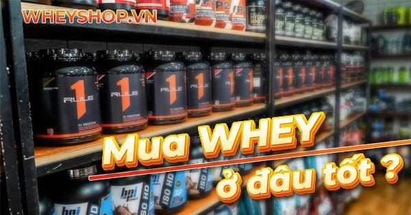 Mua Whey Protein ở đâu uy tín Hà Nội ? Để tìm mua Whey Protein thì nên đánh giá những tiêu chí nào? Tham khảo chi tiết qua bài viết sau...