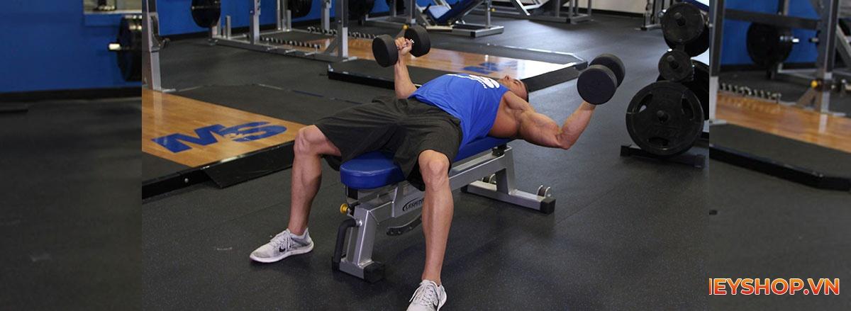 Tổng hợp 30 bài tập với tạ tay cho nam toàn diện hiệu quả nhất, tập luyện với tạ tay full body ...