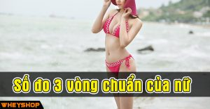 So do 3 vong chuan cua nu WheyShop