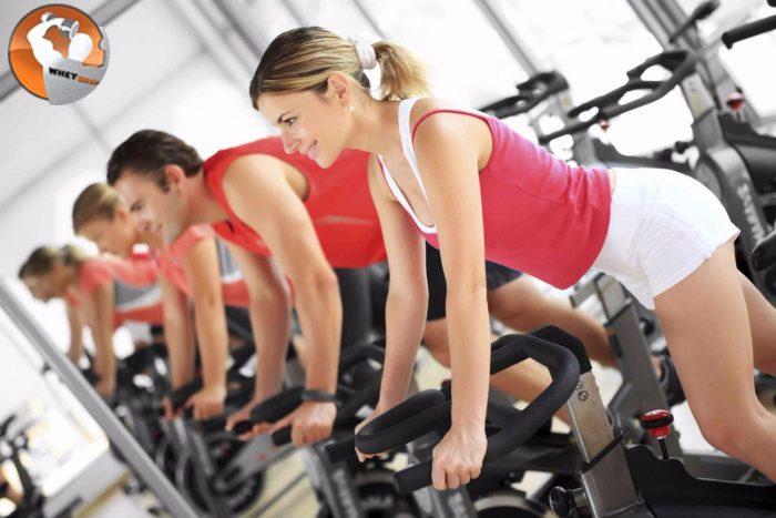 tập gym nữ hiệu quả
