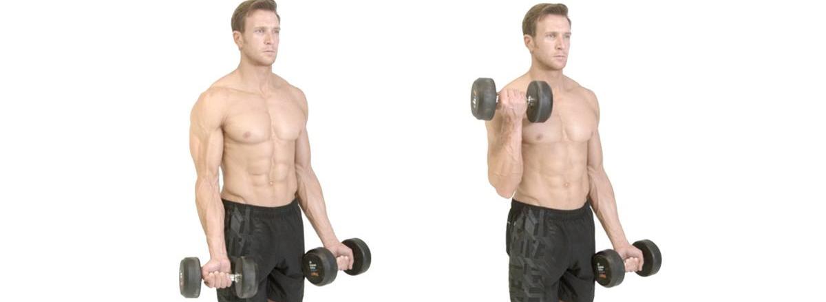 10 bai tap bap tay hieu qua nhat cua bodybuilding Dumbbell Biceps Curl