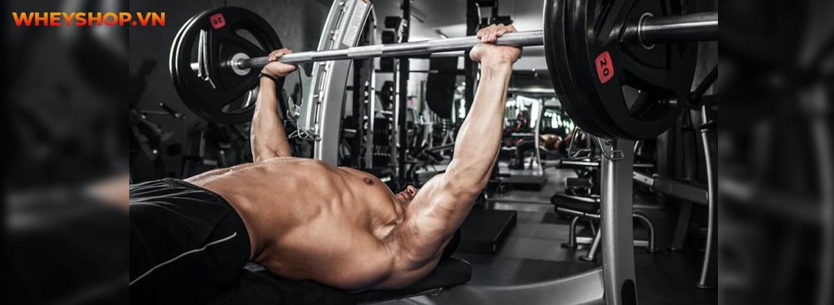 Superset là gì? Tìm hiểu chi tiết về Superset và cách áp dụng Superset hiệu quả nhất để tăng cơ bắp vượt trội hơn...