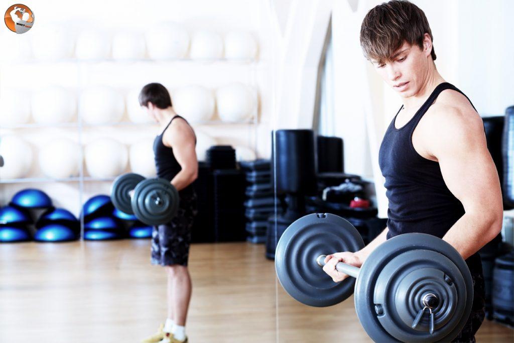 7 bài tập cơ tay trước hiệu quả hàng đầu