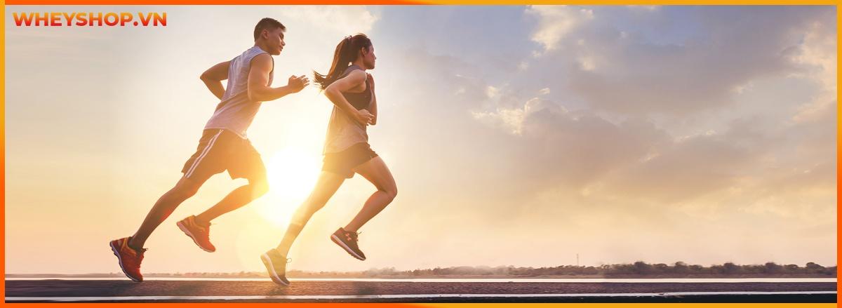 Tham khảo ngay 10 Bài tập Cardio tại nhà cho nữ đơn giản, hiệu quả, hỗ trợ đốt cháy calories giảm cân nhanh chóng lấy lại vóc dáng hiệu quả.