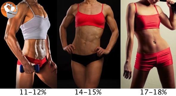 Body Fat: Cơ thể bạn chuẩn đến đâu