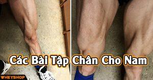 Cac bai tap chan cho nam giup body can doi WHEYSHOP VN
