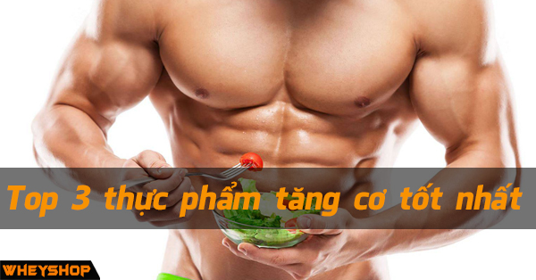 Top 3 nguon thuc pham tang co tot nhat WHEYSHOP VN