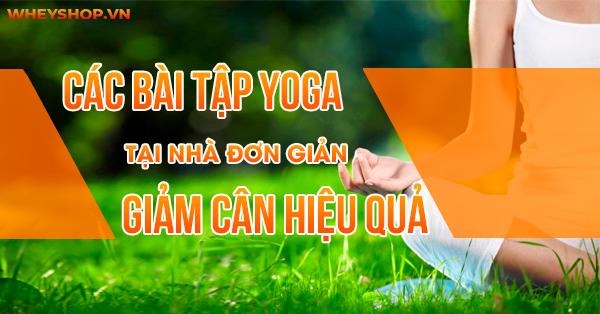 Bạn muốn giảm cân nhưng không có thời gian tới phòng tập. Những bài tập yoga tại nhà đơn giản... Ngoài giúp giảm cân, còn làm tinh thần thoải mái, đẹp da...