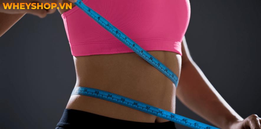Body fat là gì và công thức tính body fat sao cho chuẩn...Body fat - mỡ cơ thể: là một thành phần phức tạp...gọi là BodyMetrix...
