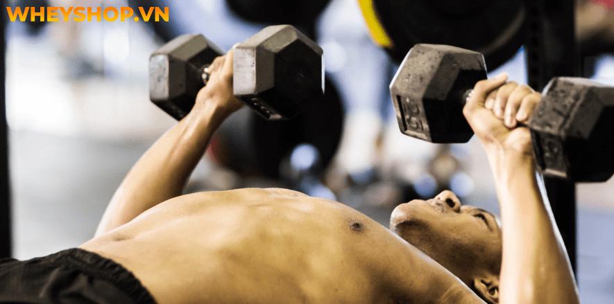 """Các bước tập luyện được lập trình riêng để tăng kích thước cũng như sức mạnh cho cơ bắp cơ phổ biến là """"Dropset"""". Vậy tập luyện Drop set như thế nào hiệu quả?"""
