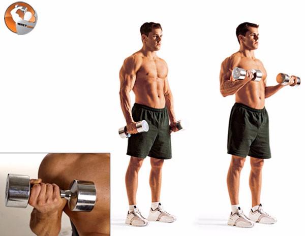 Cách tập gym tại nhà hiệu quả
