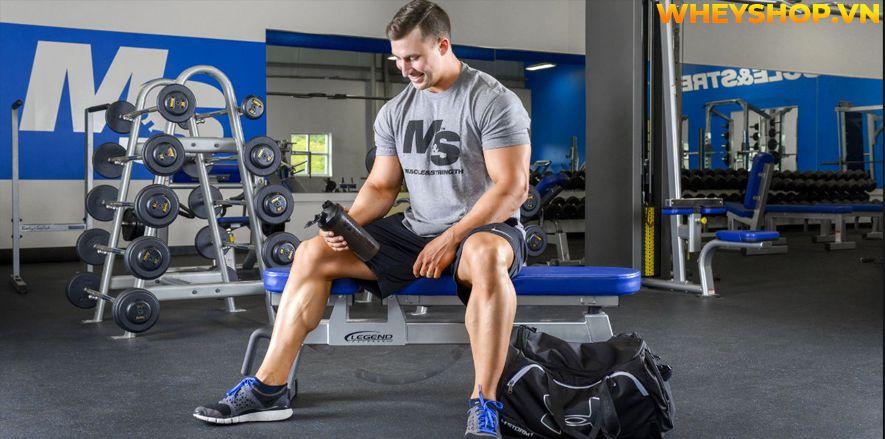 Pre-Workout Tăng Sức Mạnh là gì? Hôm nay Whey Shop sẽ cùng các bạn tìm hiểu dòng thực phẩm bổ sung tăng sức mạnh hỗ trợ buổi tập luyện trở nên hiệu quả hơn.