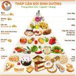 Bảng dinh dưỡng cho người tập thể hình phổ biến nhất hiện nay