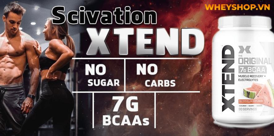 BCAA giá bao nhiêu? BCAA là một trong những thực phẩm bổ sung tốt nhất cho những người tập thể hình. Hãy cùng WheyShop tìm hiểu qua bài viết...