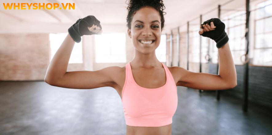 Tập thể hình là gì? Tập thể hình là môn thể thao kích thích sự phát triển cơ bắp nhờ các bài tập nặng như tạ đơn, tạ đòn, máy tập Gym chuyên dụng...
