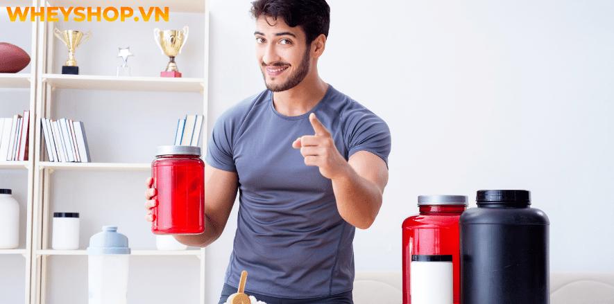 Nếu bạn đang băn khoăn trong việc chọn Whey protein loại nào tốt nhất thì hãy cùng WheyShop tham khảo chi tiết bài viết ngay sau đây...