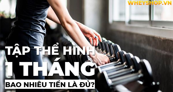 tap the hinh 1 thang bao nhieu tien 8