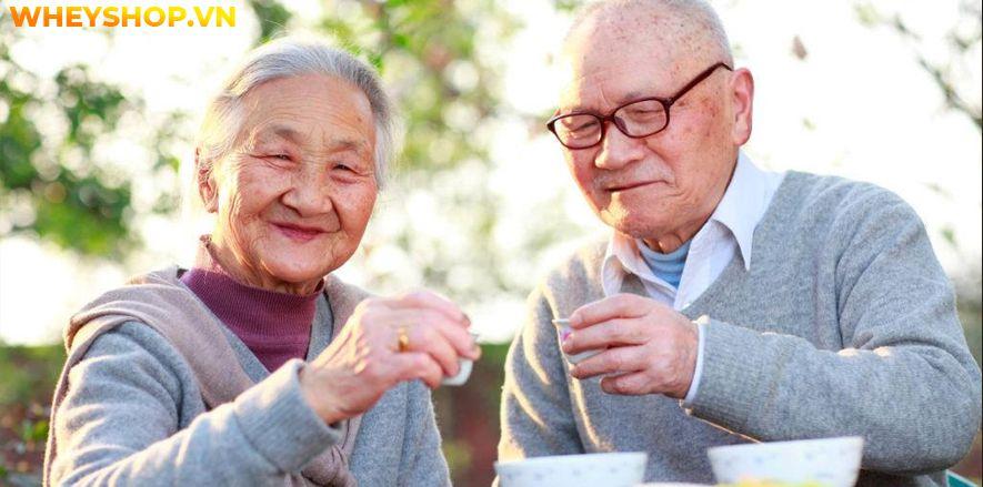 Tập thể hình là một cách để nâng cao sức khỏe. Hãy cùng WheyShop tìm hiểu lời khuyên hữu ích về vấn đề tập thể hình tuổi 50 sao cho hiệu quả nhất...