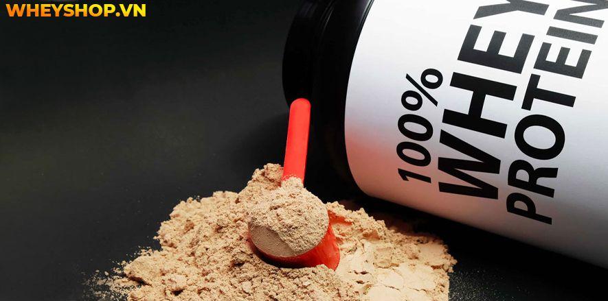 Nếu bạn đang băn khoăn Whey Protein dùng được bao lâu thì hãy cùng WheyShop tìm hiểu chi tiết qua bài viết ngay sau đây...