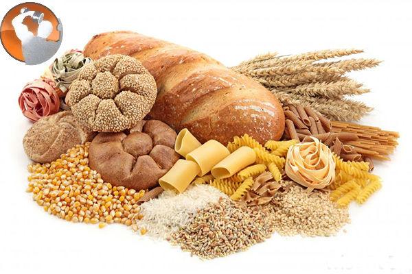 dinh dưỡng cho người mới tập thể hình
